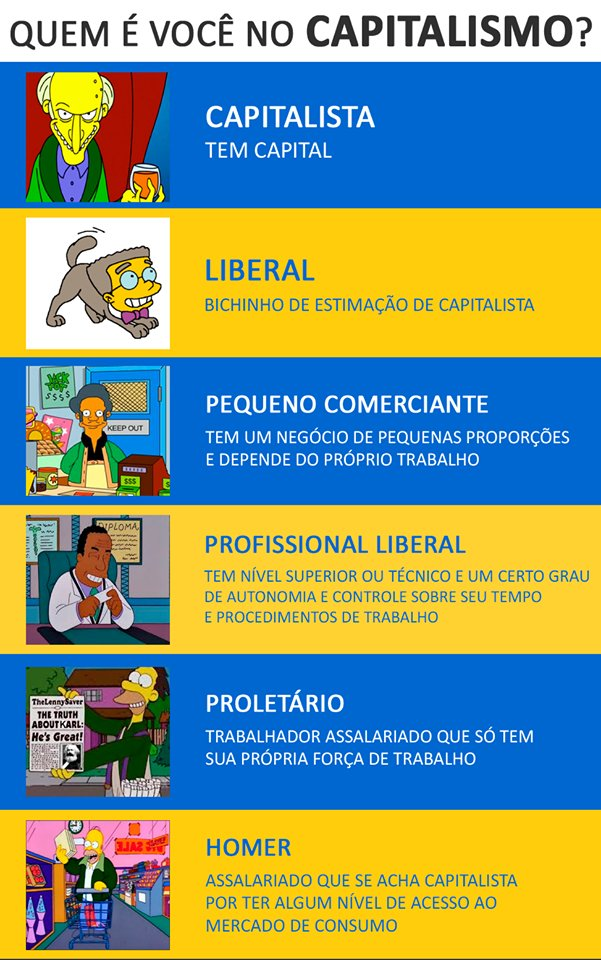Curso rapido de capitalismo e classes sociais